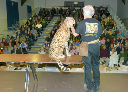 photo of Rob Dicely with Kamau, a cheetah at a WCE&CF public presentation